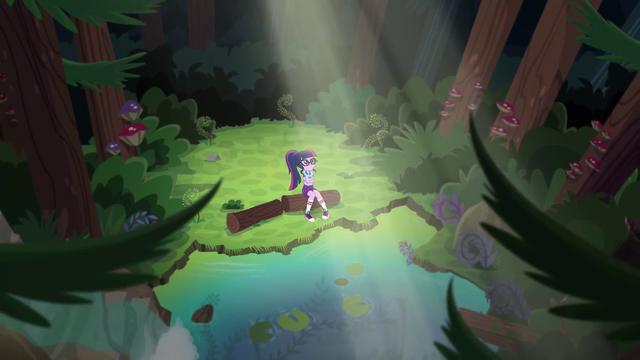 File:Twilight Sparkle in sad solitude EG4.png