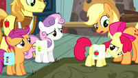 Applejack puts saddlebags on Apple Bloom S5E6