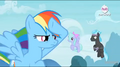 Rainbow Dash on vigil EW Promotional Teaser.png