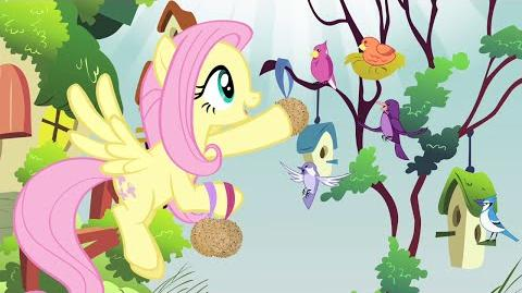 Romanian My Little Pony Music In The Treetops HD