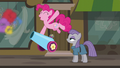Pinkie fires her party cannon with joy S6E3.png