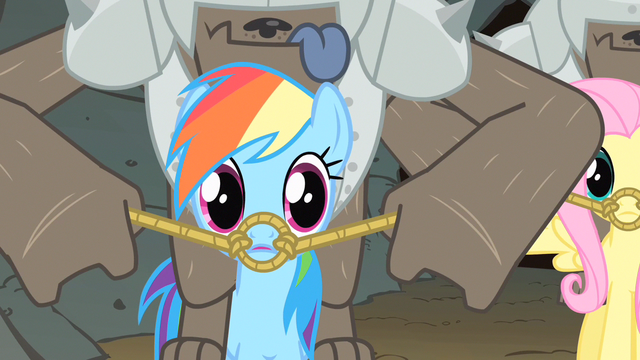 File:Rainbow Dash question look S1E19.png