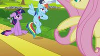 Rainbow Dash telling Fluttershy's measurement S2E22