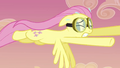 Fluttershy still flying around S2E22.png