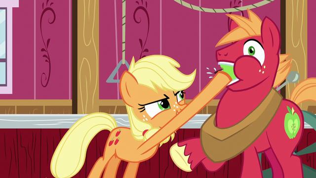File:Applejack stuffs an apple in Big Mac's mouth S6E23.png