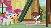 Pipsqueak wants the CMC to be their campaign managers S5E18.png