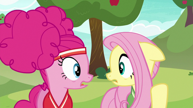 File:Pinkie and Fluttershy look at each other worried S6E18.png