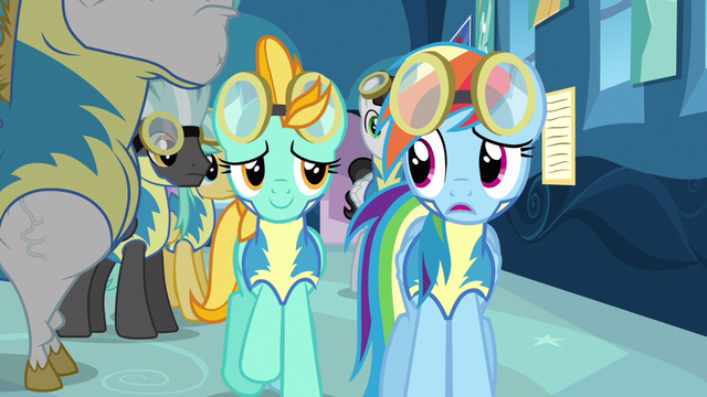 File:Rainbow Dash & partner S3E7.png