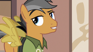 Quibble showing off his Daring Do knowledge S6E13