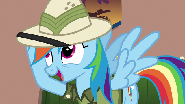 "File:Rainbow ""the hard part was figuring out"" S6E13.png"