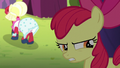Apple Bloom whispering angrily S5E17.png