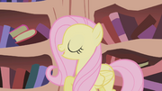 """Fluttershy """"we are just doing this for the ticket"""" S1E03"""
