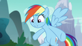 "Rainbow Dash ""because of your outfit"" S6E6.png"