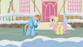 Fluttershy telling Rainbow Dash the animals' homes will flood S1E11.png