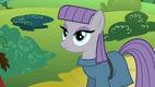 Maud Pie (character)