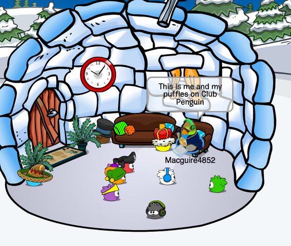 File:Macguire4852 Club Penguin.png