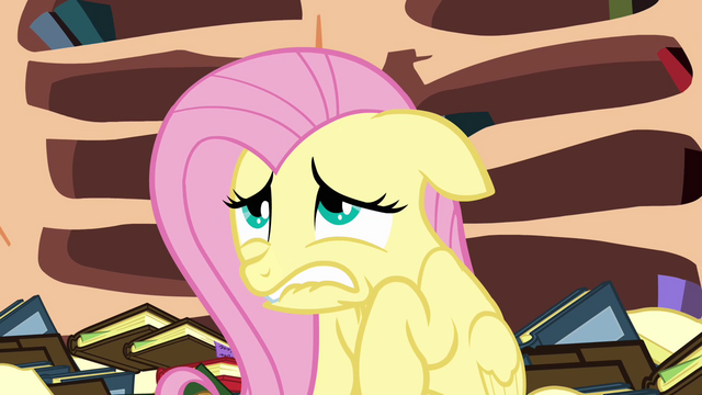 File:Fluttershy agrees to do the mission S3E05.png