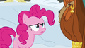 """Pinkie Pie """"you spent the whole winter in a hole?"""" S7E11.png"""