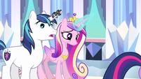 Princess Cadance & Shining Armor dumbfounded S3E1