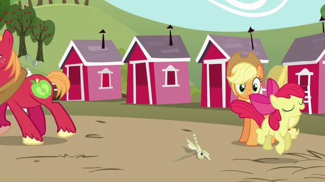 File:Applejack sees Apple Bloom hopping; Big Mac walks away S5E17.png