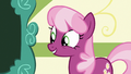 Cheerilee thanking Scootaloo for her report S7E7.png