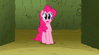 Pinkie Pie gasping S2E1