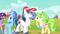 Rainbow Dash yeah let's look S3E12.png