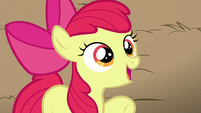 Apple Bloom claims AJ to be the best sister of all time S5E17