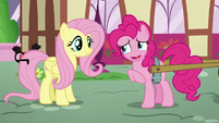 "Pinkie ""Baby carrots are kinda like big carrots"" S5E19"