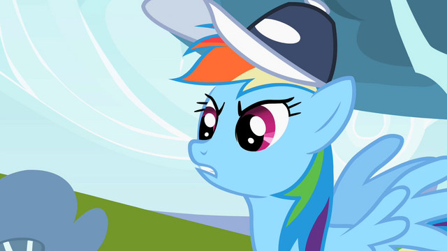 "File:Rainbow Dash ""Has the guts"" S2E07.png"