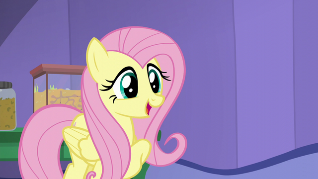 "File:Fluttershy ""I'm sure Shining Armor will love it"" S5E19.png"
