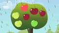 Big apples S2E01.png