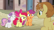 """Cutie Mark Crusaders """"at your service!"""" S7E8"""