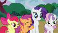 "Cutie Mark Crusaders ""no problem!"" S7E6.png"