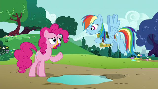 """File:Pinkie Pie """"a good time to stop pranking"""" S6E15.png"""