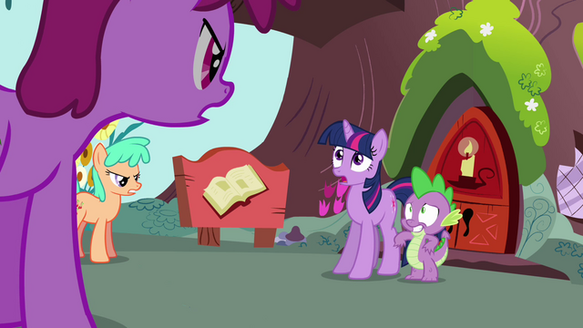 File:Twilight 'Please everypony' S3E03.png