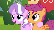 Diamond Tiara with Scootaloo S4E15