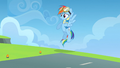 Is everypony okay S3E07.png