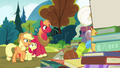 "Applejack ""that's all right, Goldie"" S7E13.png"