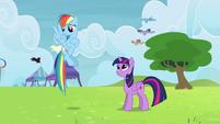Rainbow Dash prefers winners over non-winners S4E10