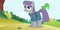 Maud Pie (episode)