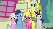 "Crowd of ponies ""no other pony like her"" S4E12"