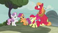 "Apple Bloom ""we should've been thinking about"" S7E8.png"