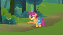 Scootaloo 'what about Rainbow Dash' S3E06