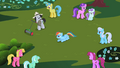Ponies look at Rainbow Dash S2E08.png