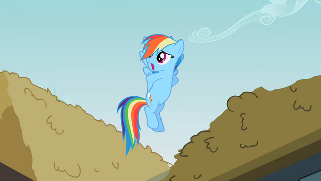 File:Rainbow Dash 'And I guess' S2E08.png