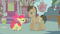 Apple Bloom backs Dr. Hooves into a corner S1E12