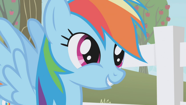 "File:Rainbow Dash ""don't you see, Twilight?"" S1E03.png"