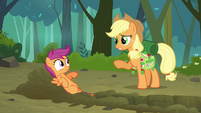Applejack 'You seem a little jumpy' S3E06