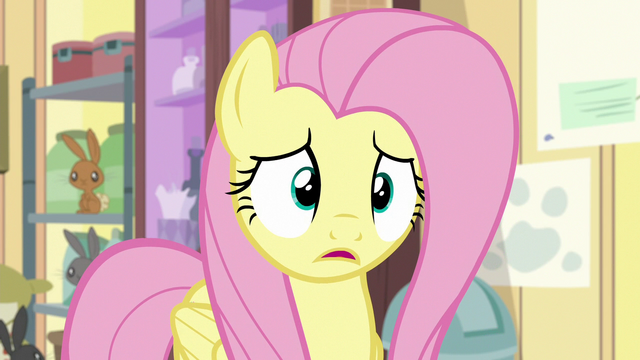 File:Fluttershy apologizes to Dr. Fauna S7E5.png